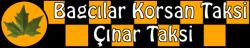 Çınar Taksi 0555 890 02 13
